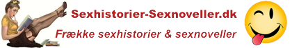 Sexhistorier og Sexnoveller